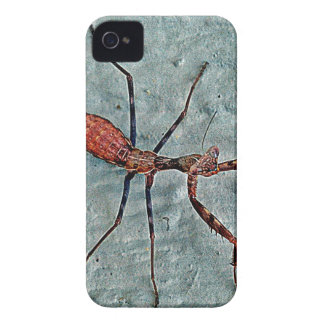 Big Scary Bug iPhone 4 Case-Mate Case