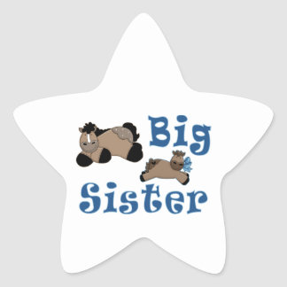 Big Sister Baby Boy Pony Star Sticker