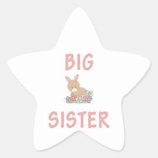 Big Sister Cute Bunny 1 Star Sticker