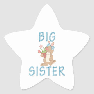 Big Sister Cute Bunny 3 Star Stickers