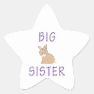 Big Sister Cute Bunny 4 Star Sticker