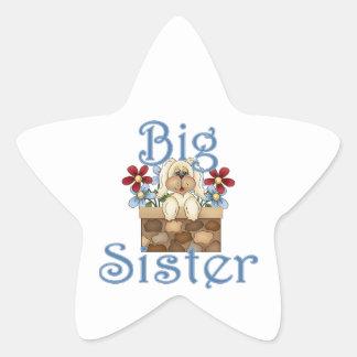 Big Sister Fluffy Pup 3 Star Sticker