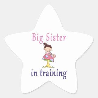 Big Sister In Training Fairy Star Sticker