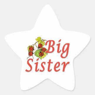 Big Sister Ladybugs Sticker