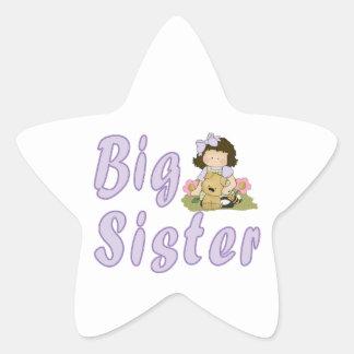 Big Sister Little Friends 4 Star Sticker