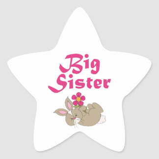 Big Sister Sweet Bunny 3 Star Stickers