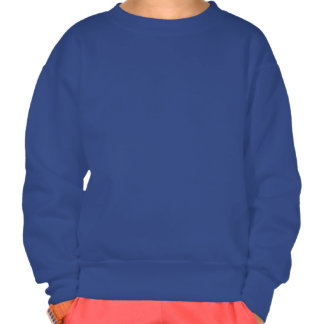 Big Star Pull Over Sweatshirt