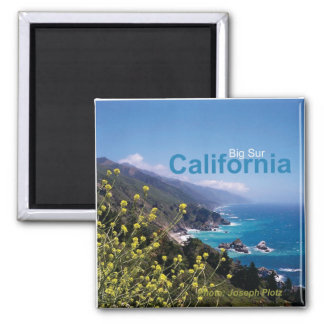 Big Sur California Travel Souvenir Fridge Magnet