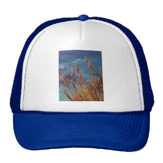 big-sur-cove Big Sur Cove ,Big Sur, Travel, nature Hats
