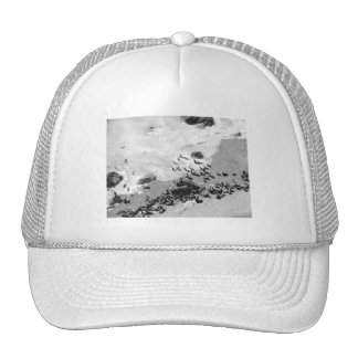 Big Sur Hats