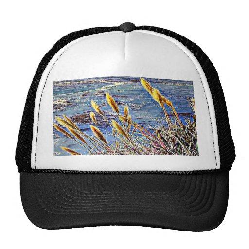 Big Sur Trucker Hat