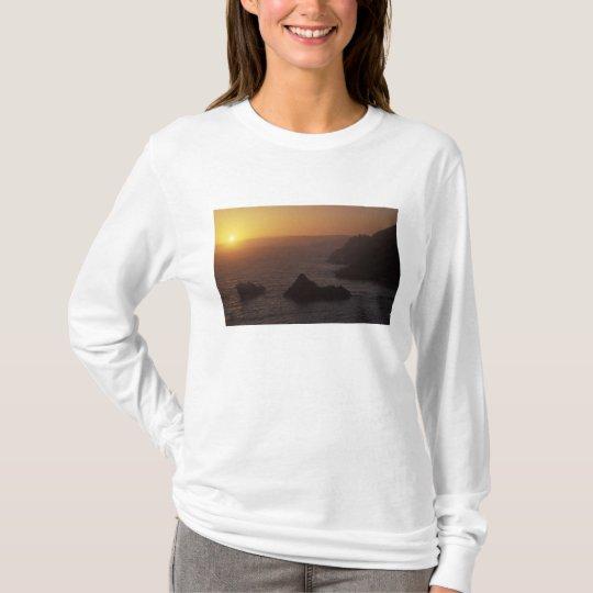 Big Sur off Highway 101, California, USA T-Shirt