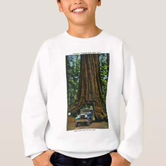 Big Tree Wawona, Mariposa Grove, CA Sweatshirt