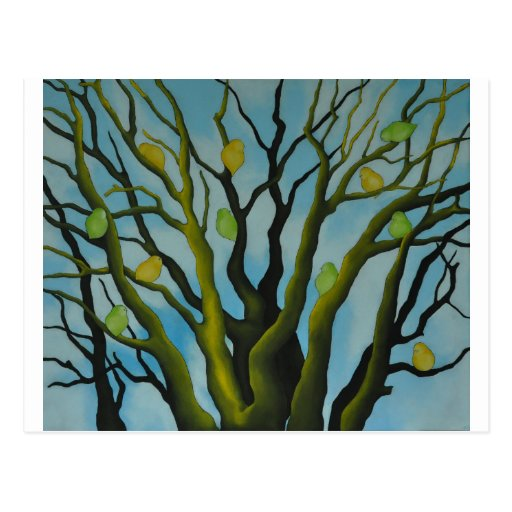 Big Tree With Green wild duck Yellow Bird's Post Cards