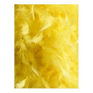 Big Yellow Feathers Postcard