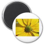 Big Yellow Flower Fridge Magnet