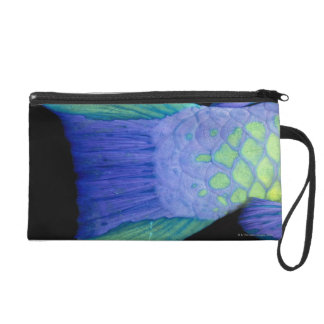 Bigeye Priacanthus hamrur, close-up of tail Wristlet Purse