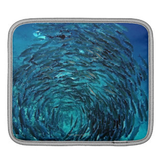 Bigeye trevally (Caranx sexfasciatus), swimming iPad Sleeve
