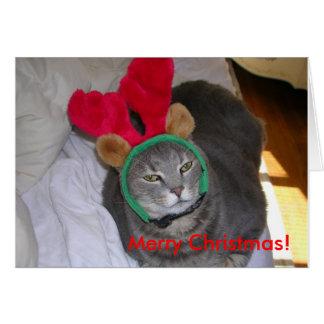 bigfatcat Merry Christmas Cards