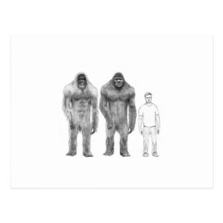 Bigfoot is Big Compared to Man Postcard