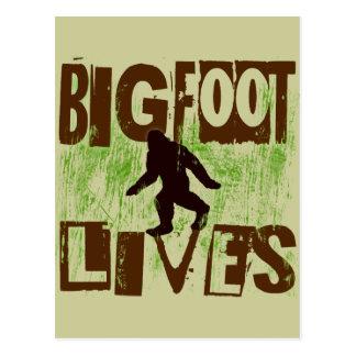 Bigfoot Lives Postcard