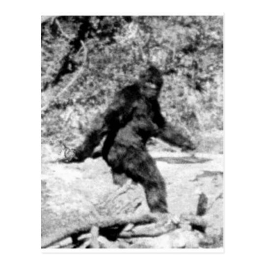 Bigfoot Postcard
