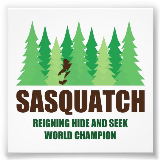 Bigfoot Sasquatch Hide and Seek World Champion Photo