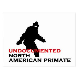 BIGFOOT: UNDOCUMENTED NORTH AMERICAN PRIMATE POSTCARD