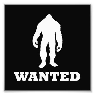 Bigfoot Wanted Photo Art