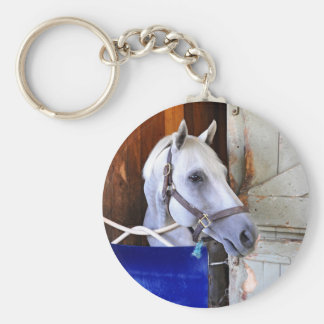 Bigger is Bettor Basic Round Button Key Ring