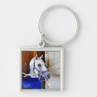 Bigger is Bettor Silver-Colored Square Key Ring
