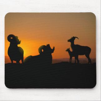 Bighorn Sheep Mouse Mat