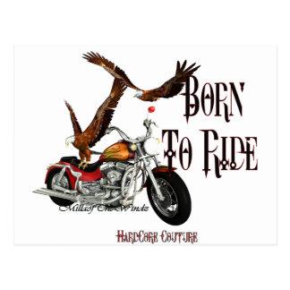 * Biker Born To Ride 1 Postcard