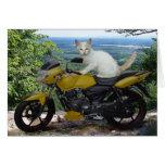 Biker Cat Notecard Greeting Card