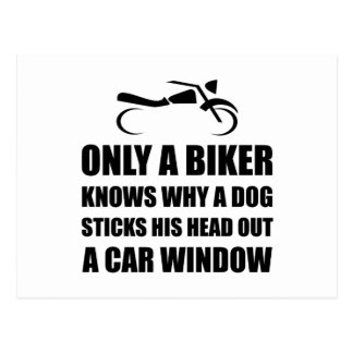 Biker Dog Postcard