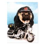 Biker Pug Dog Postcard