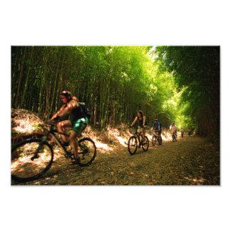 Biking in bamboo trail photograph