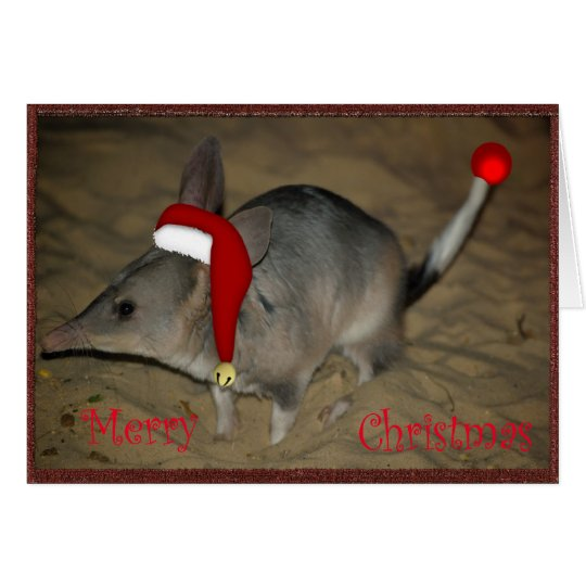 BILBY CHRISTMAS Xmas Australian Christmas Card