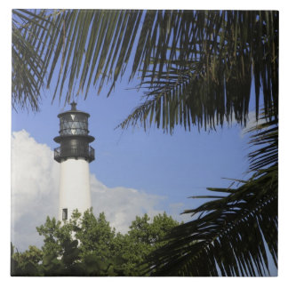 Bill Baggs Cape Florida Lighthouse, Bill Baggs 2 Tile