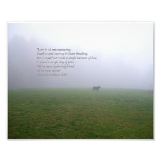 Bill In The Fog, an ode to departed canine friends Art Photo