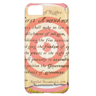 Bill of Rights iPhone 5C Case