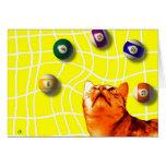 Billiards Cat Card
