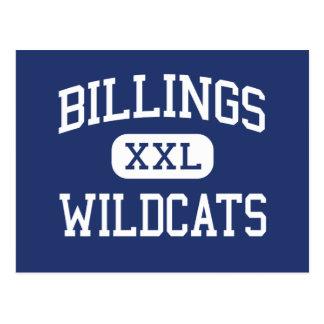 Billings - Wildcats - High - Billings Missouri Postcard