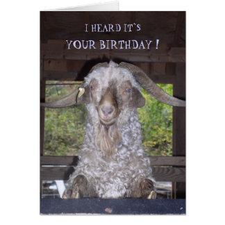 BILLY GOAT BIRTHDAY CARD