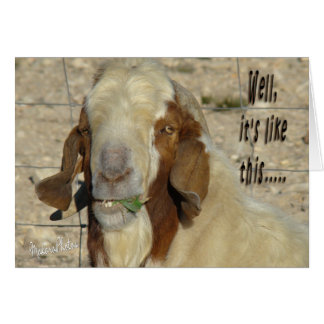 Billy Goat Card- for any occasion Card