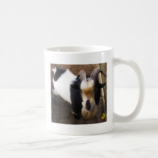 Billy Goat Classic White Coffee Mug