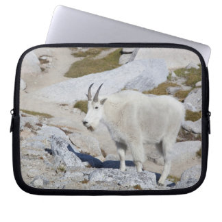 Billy goat, in Upper Enchantments Laptop Sleeve