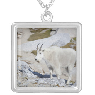 Billy goat, in Upper Enchantments Silver Plated Necklace