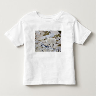 Billy goat, in Upper Enchantments Toddler T-Shirt