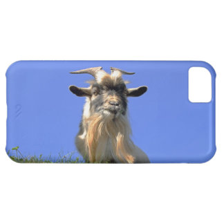 Billy Goat Photo iPhone 5C Case